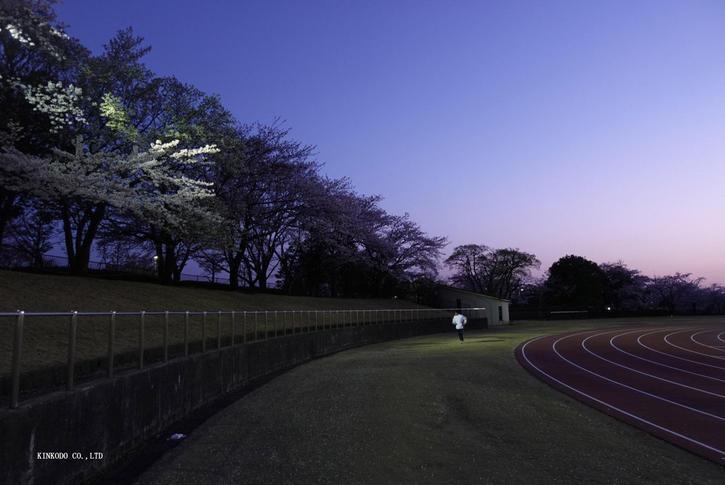 2021sakura9.jpg