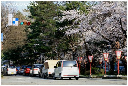 2008hirosaka.jpg