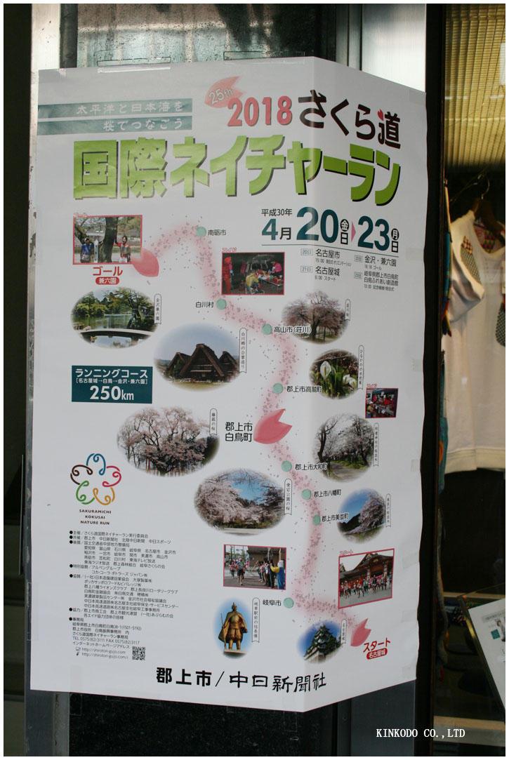 2018sakura.jpg