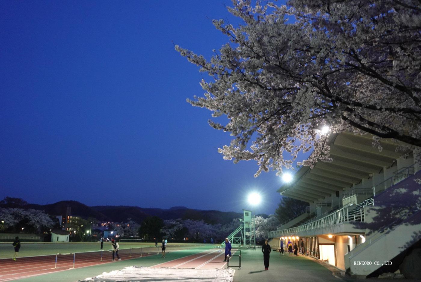 https://www.kinkodo.jp/blog/images/2021sakura8.jpg